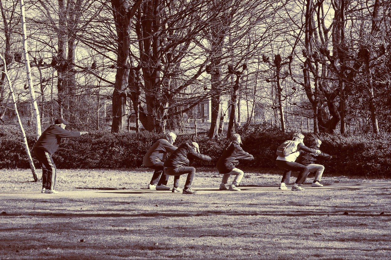 Personnes âgées faisant des exercices dans le parc.
