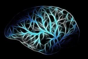 Cerveau avec neurones.